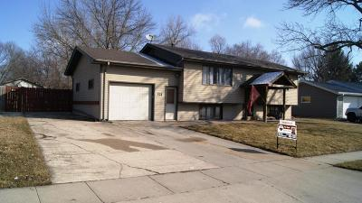 Ames Single Family Home For Sale: 521 Jewel Drive