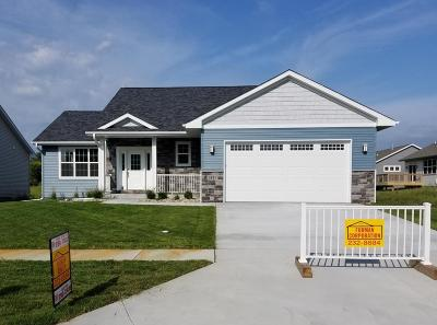 Ames Single Family Home For Sale: 1417 Oregon Avenue