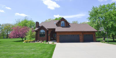 Story County Single Family Home For Sale: 25339 Byron Circle