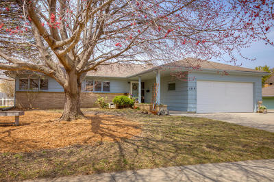 Ames Single Family Home For Sale: 1519 Marston Avenue