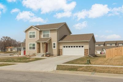 Ames Single Family Home For Sale: 3823 Coy Street