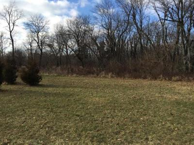 Boone County Residential Lots & Land For Sale: 1335 SW Noble Lynx Lane