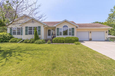 Ames Single Family Home For Sale: 417 Crystal Street
