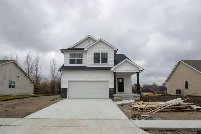 Ames Single Family Home For Sale: 5319 Rowling Drive