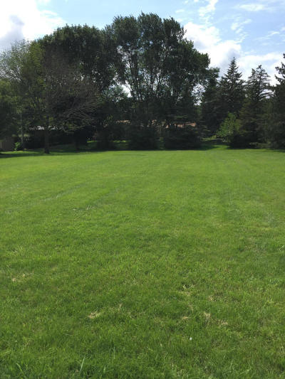 Boone County Residential Lots & Land For Sale: 517 S Delaware Street