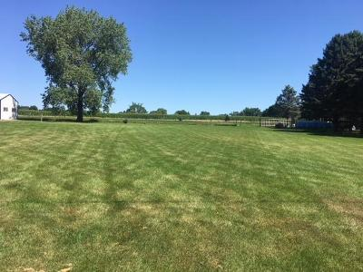Boone County Residential Lots & Land For Sale: 409 SW Ringgold Street