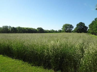 Boone IA Residential Lots & Land For Sale: $89,900