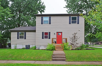 Boone Single Family Home For Sale: 424 W 5th Street