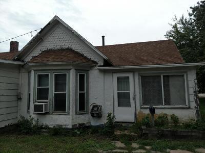 Boone Single Family Home For Sale: 1025 Hanley Street