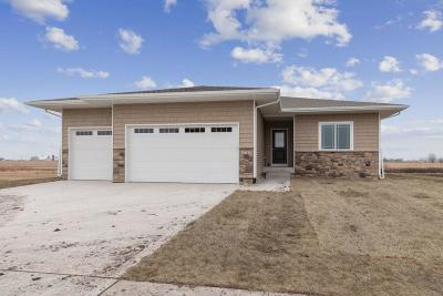 Ames Single Family Home For Sale: 1717 Ledges Drive