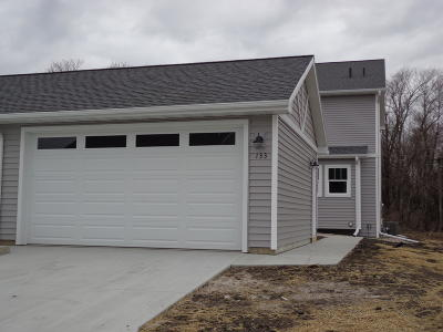 Ames Single Family Home For Sale: 133 Wilder Place