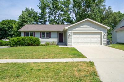 Ames Single Family Home For Sale: 218 Crane Avenue
