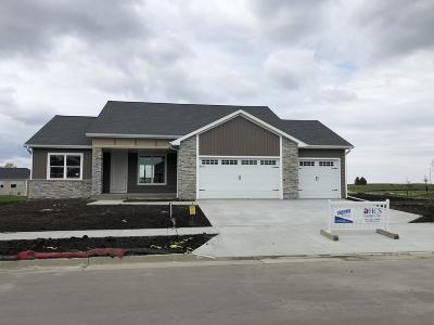 Ames Single Family Home For Sale: 2207 Audubon Drive