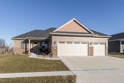 Ames Single Family Home For Sale: 4236 Ballentine Drive
