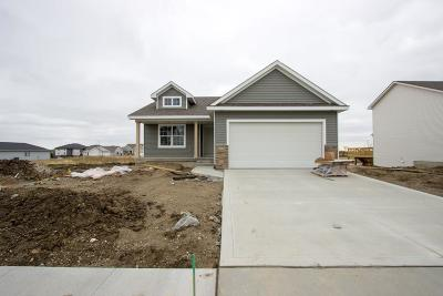 Ames Single Family Home For Sale: 5324 Rowling Drive