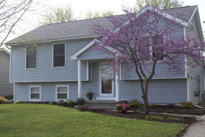Ames Single Family Home For Sale: 438 Ken Maril Road