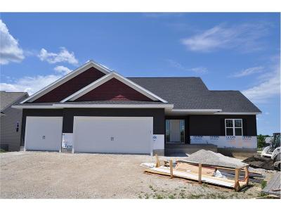 Ely Single Family Home For Sale: 1125 Sunrise Drive