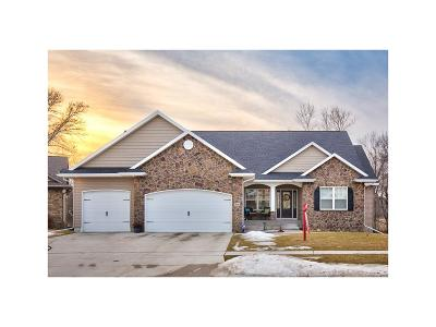 Hiawatha Single Family Home For Sale: 208 Willowood Drive