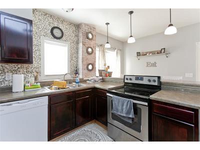 Shellsburg Single Family Home For Sale: 117 Main Street W