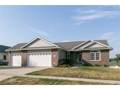 Solon Single Family Home For Sale: 502 Whispering Willow Lane