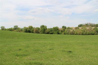 Ely Residential Lots & Land For Sale: Lot 3 Banner Valley 2nd - 40 Acres M/L