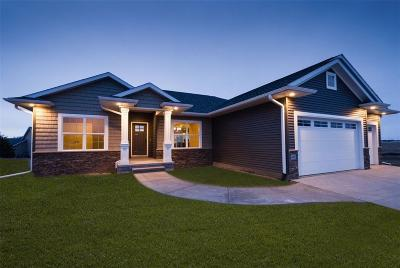 Robins Single Family Home For Sale: 3106 Brimley Pass