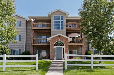Iowa City Condo/Townhouse For Sale: 2743 Triple Crown Lane #5