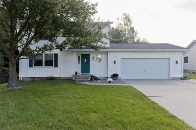 Marion Single Family Home For Sale: 245 S 19th St Court