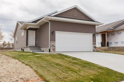 Cedar Rapids Single Family Home For Sale: 5217 Dostal Drive SW