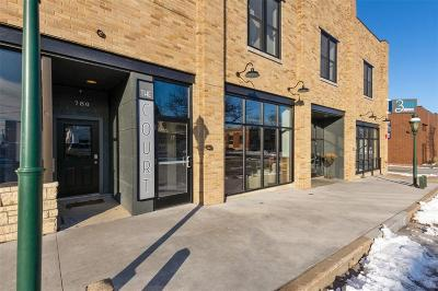 Marion Condo/Townhouse For Sale: 790 11th Street #D