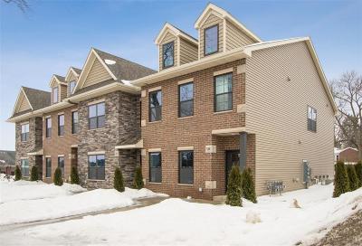 Solon Condo/Townhouse For Sale: 331 E Main Street