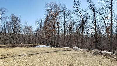 Anamosa Residential Lots & Land For Sale: Lot 9 Wapsi Ridge
