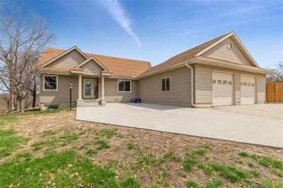 Vinton Single Family Home For Sale: 202 Riverview Drive