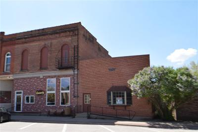 Commercial For Sale: 119 W Main Street