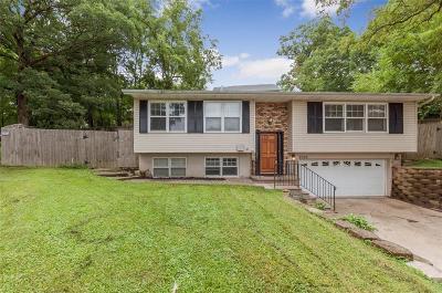 Cedar Rapids Single Family Home For Sale: 2505 M Avenue NW