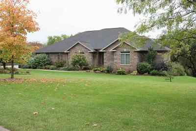 Dubuque Single Family Home For Sale: 12163 Forest Meadow Drive