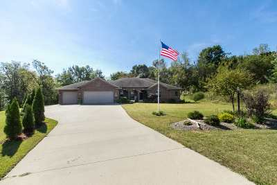 Dubuque Single Family Home For Sale: 8280 Turkey Valley Lane