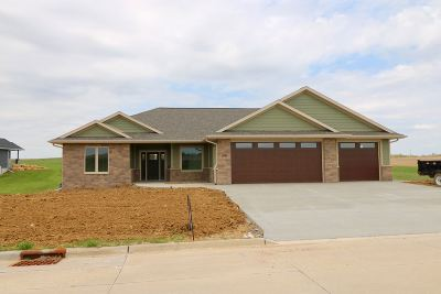 Single Family Home For Sale: 8261 Ginger Drive
