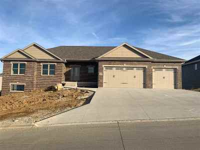 Single Family Home For Sale: 419 Angela Jean Circle