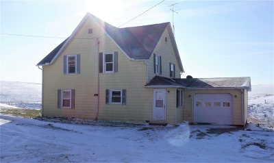 Single Family Home For Sale: 38225 150th Street
