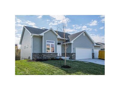 Des Moines Single Family Home For Sale: 4907 E Hull Avenue