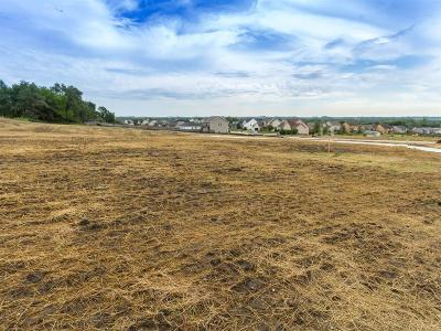 Granger Residential Lots & Land For Sale: 2503 Eagle Ridge Drive
