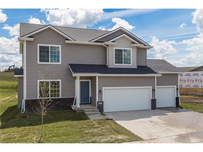 Waukee Single Family Home For Sale: 32 SE Pembrooke Lane