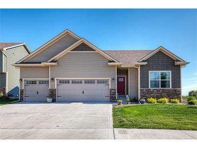 Norwalk Single Family Home For Sale: 196 High Road