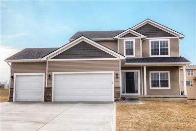 Van Meter Single Family Home For Sale: 5330 Bulldog Avenue