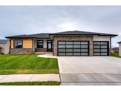 Waukee Single Family Home For Sale: 365 NE Wolfpack Drive
