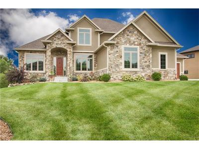 Urbandale Single Family Home For Sale: 15806 Brookview Drive