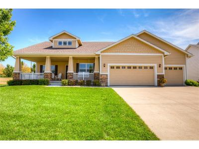 Urbandale Single Family Home For Sale: 14211 Dellwood Drive