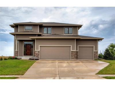Urbandale Single Family Home For Sale: 14201 Brookview Drive