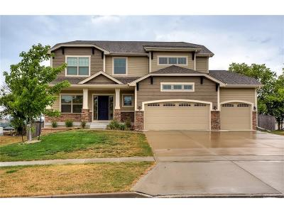 Waukee Single Family Home For Sale: 115 SE Telby Lane